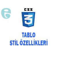 CSS Tablo Stil Özellikleri